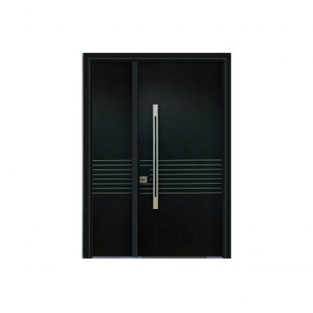 דלת כניסה 2513